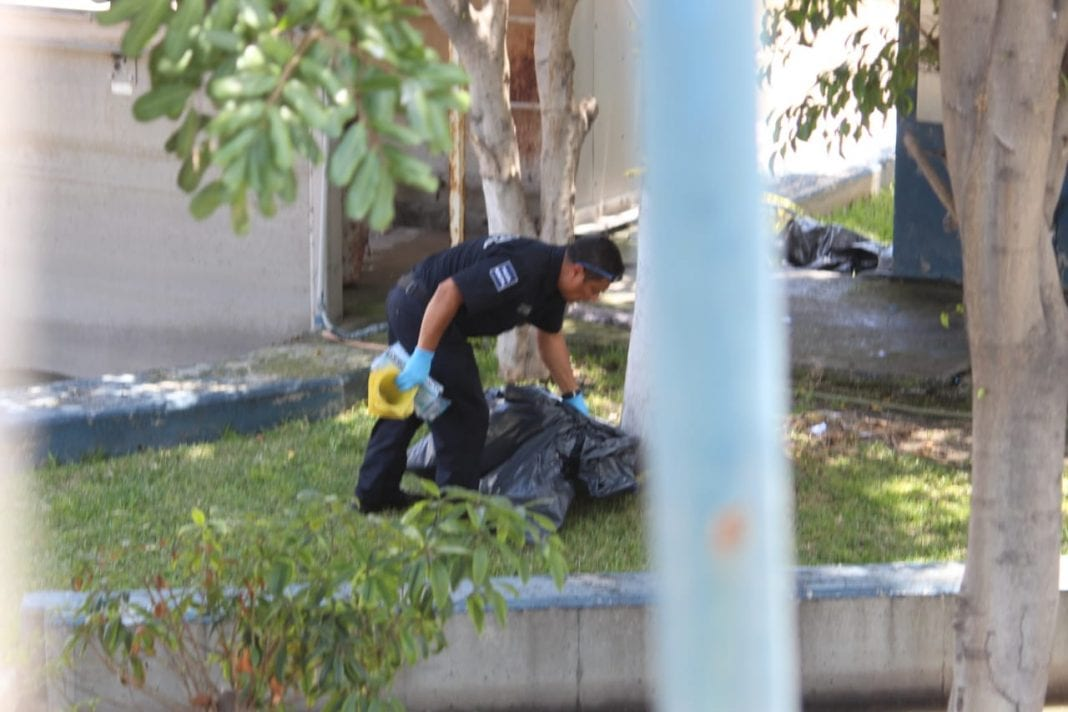 Photo of Hallan mujer desmembrada en instalaciones de CESPT