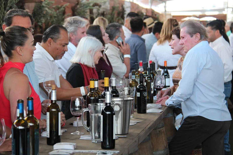 Turistas en viñedos en Ruta del Vino en Ensenada