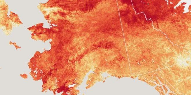 Photo of Alaska se 'derrite', registra calor histórico