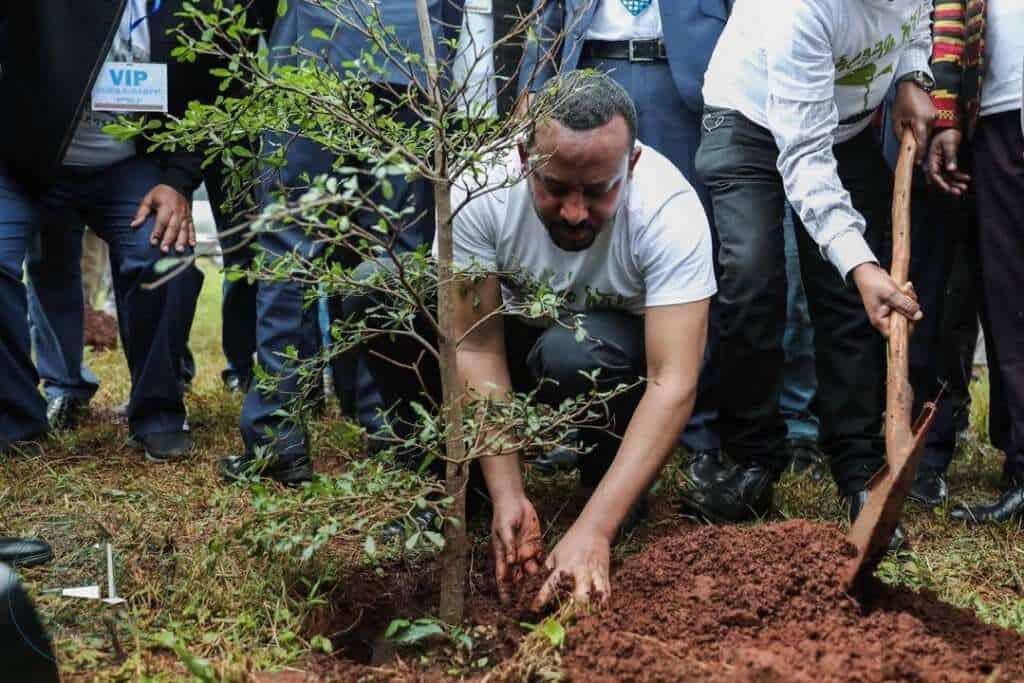 abiy ahmed participando en la green legacy iniciativ twitter