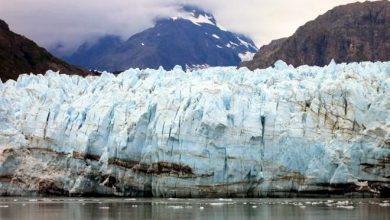 Photo of Padece Alaska consecuencias por mes de mayor calor
