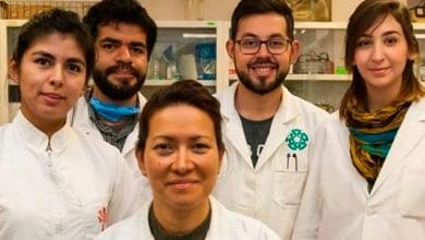 Photo of Investigadores del IPN logran eliminar virus del papiloma humano con éxito