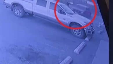 Photo of [VIDEO] Hombre asalta una tienda y al salir le roban su camioneta: Karma instantáneo