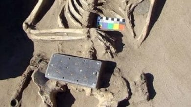 "Photo of [VIDEO] Encuentran ""iPhone"" de 2,100 años de antigüedad en tumba"