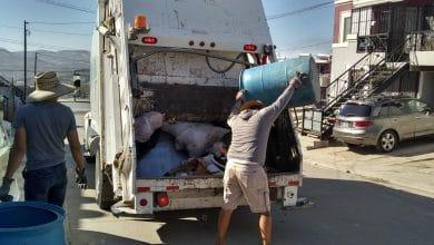 Photo of Arranca recolección de basura en Villa del Álamo