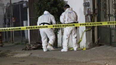 Photo of Se complica situación para policía que mató a un perro