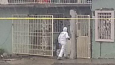 Photo of Mujer de 70 años asesinada en Tijuana