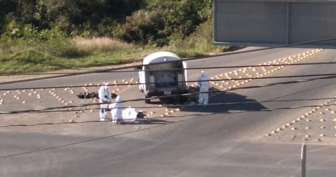Riegan restos humanos en Guanajuato y Jalisco