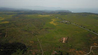 Photo of Detonará nuevo Aeropuerto comercio y turismo en Valle de Guadalupe