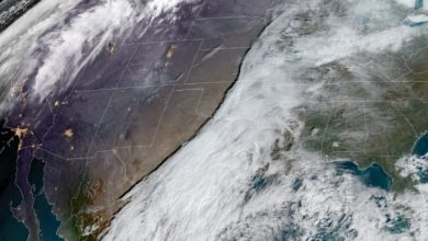 tormenta mexico