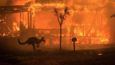 Photo of Australia moviliza al Ejército por incendios