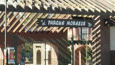 Photo of Mujer es embestida por trenecito del Parque Morelos