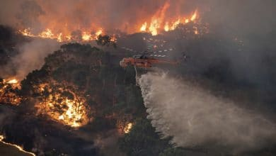 Photo of Humo de incendios en Australia llega hasta sudamérica