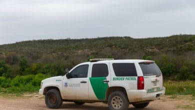 Photo of Se agarra a golpes traficante de personas con 'migras'