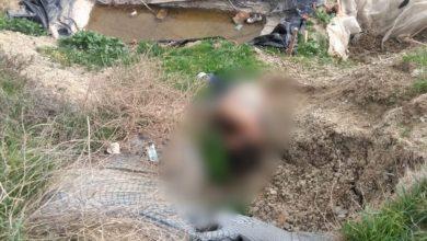 Photo of Tiran cadáver de una mujer en barranco de Puerto Nuevo