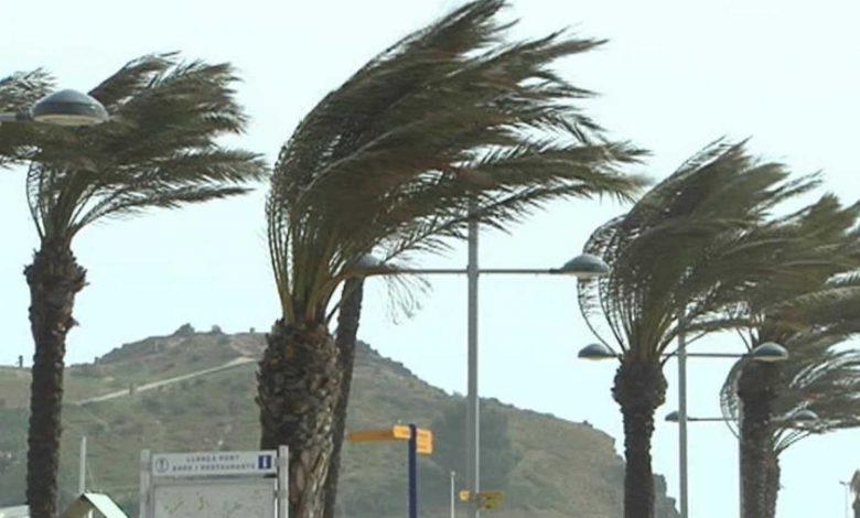 Photo of Se esperan vientos para Tijuana desde hoy hasta el jueves