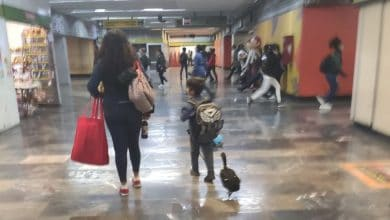 Photo of Niño pasea a su pata en el metro y se vuelve sensación