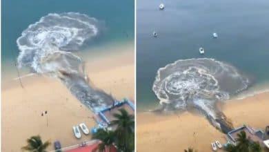 Photo of Exhiben tremendo derrame de aguas negras en Playa de Acapulco