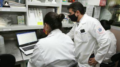 Photo of IMSS envía propuesta para desarrollar vacunas contra el covid-19