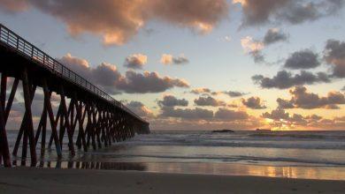Photo of Anuncian reapertura de playas en Rosarito