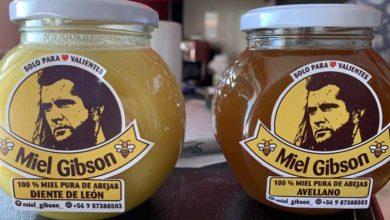 mujer-vende-miel-gibson-y-actor-prepara-demanda
