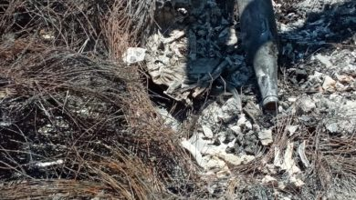 familias-de-desaparecidos-localizan-mas-cadaveres