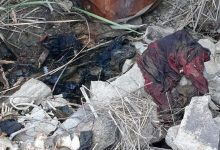 Photo of Localizan ocho cadáveres 'entambados' en Tijuana