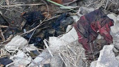 localizan-ocho-cadaveres-entambados-en-tijuana
