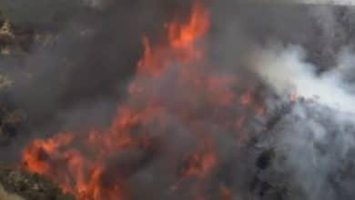 Photo of VIDEO: Arde California  y miles están en peligro