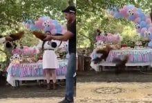 Photo of VIDEOS: Pareja revela sexo de su bebé en pelea de gallos