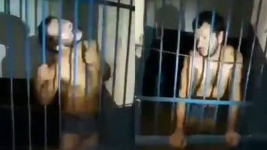 Photo of VIDEO: Pobladores atrapan a nahual; temen por extraños ruidos