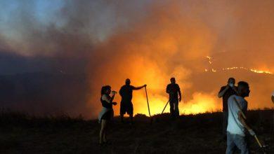 Photo of Rosarito en Alerta por fuerza de incendios forestales