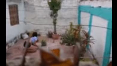 Photo of VIDEO: La graban haciendo 'agua de calzón'