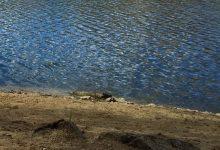Photo of Menores nadan sin supervisión y se ahogan