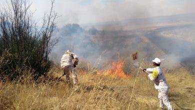 Photo of Militares combaten incendios; han consumido  miles de hectáreas