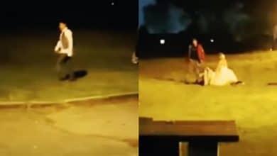 Photo of VIDEO: Novios pelen contra sus invitados en la boda