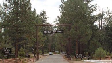 Photo of Reabrirán Parque Nacional Sierra de San Pedro Mártir