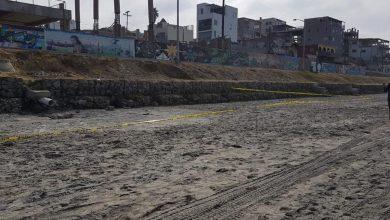 Photo of Ayuntamiento reforzará operativos de vigilancia en playas