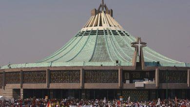 basilica-si-abrira-el-11-y-12-de-diciembre