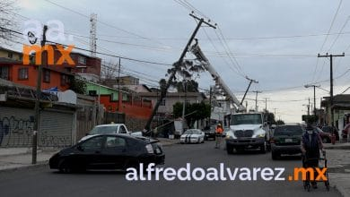 Vientos-derrumban-postes-con-electricidad