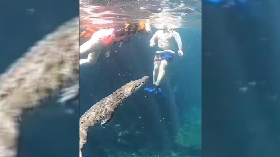 video-cocodrilo-sorprende-a-turistas-en-cenote