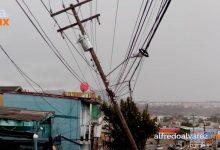 Caen-postes-y-árboles-ante-vientos-fuertes-en-Tijuana
