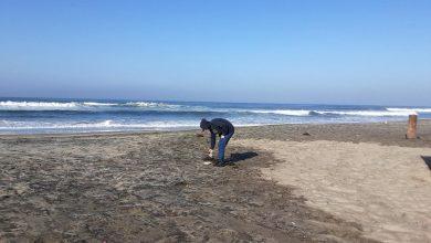 retiran-mas-de-23-toneladas-de-basura-de-playas-de-rosarito