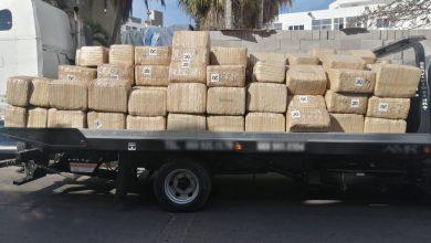 aseguran-mas-de-dos-toneladas-de-marihuana-en-sinaloa
