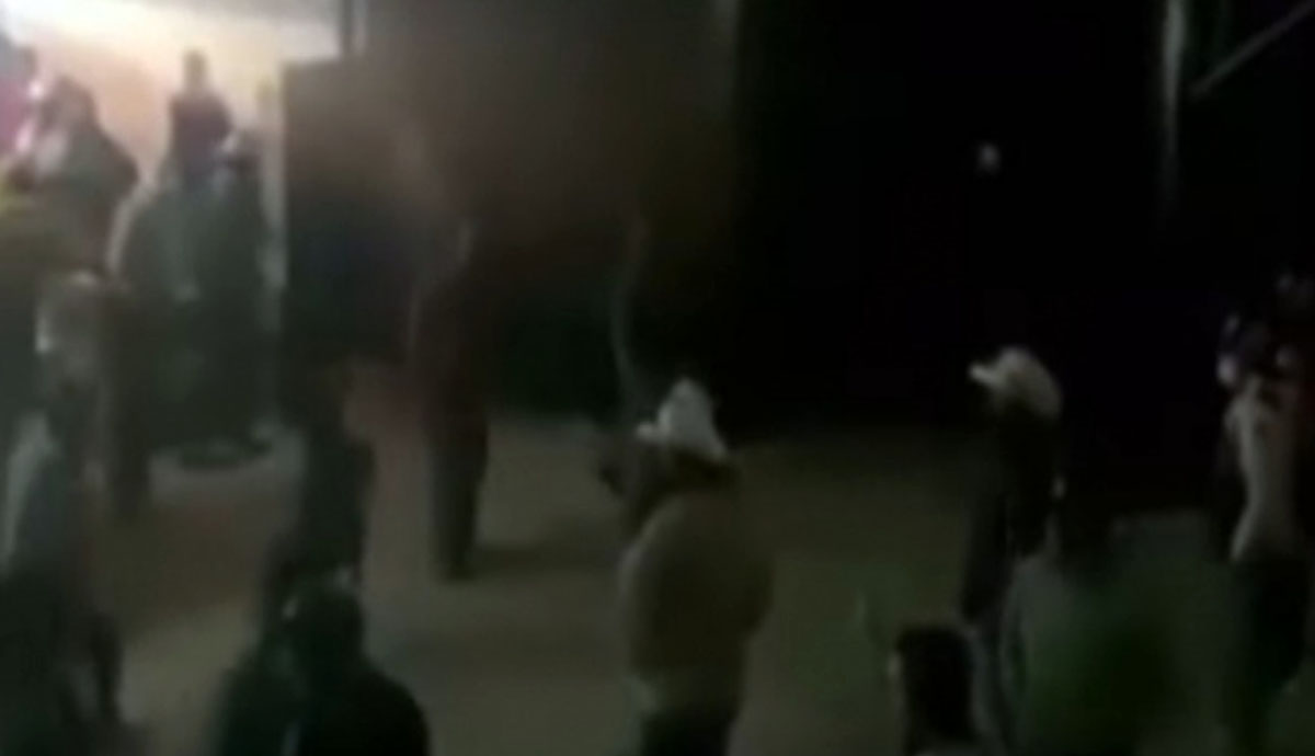 VIDEO-Pelea-campal-en-palenque-deja-una-víctima