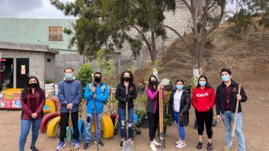 reforestan-escuelas-y-espacios-deportivos-de-playas-de-rosarito