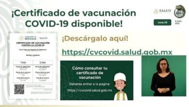 Hacen-llamado-urgente-para-sacar-Certificado-de-vacunacion-covid-19