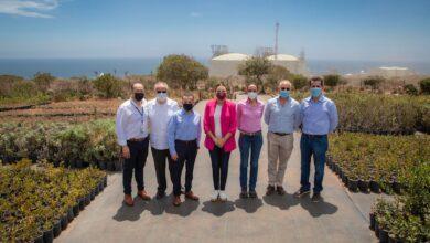Baja California, Marina del Pilar, Energías alternativas