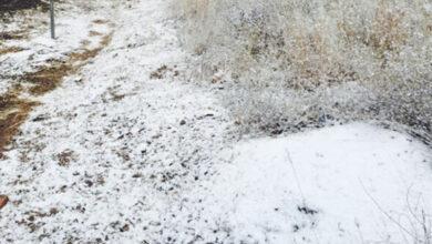 Empezó-el-frío-se-registra-primera-helada-de-la-temporada-en-Sonora